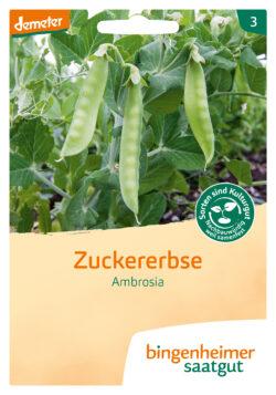 Bingenheimer Saatgut Ambrosia - Zuckererbse (Saatgut) 5x1Stück