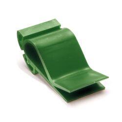 [ECHT BIO.] Ksnklmmn,grün(fürlamnrSldr) 10Stück