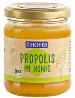 HOYER Propolis im Honig 6x250g
