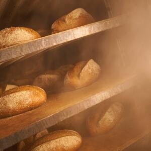 Nur Puur Brote beim Abkühlen