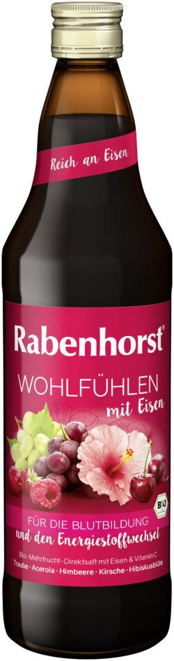 Rabenhorst Wohlfühlen mit Eisen BIO 6x750ml