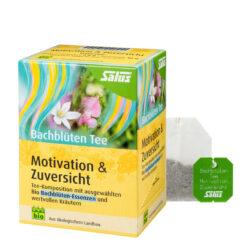 Salus® Bachblüten Tee Motivation & Zuversicht bio 15FB 6x30g