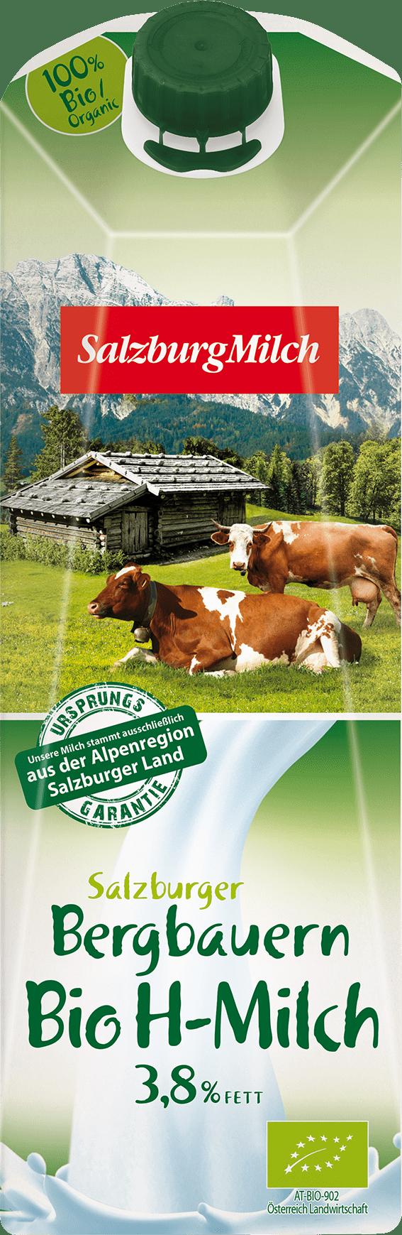 SalzburgMilch Salzburger Bergbauern Bio H-Milch 3,8% 1 Liter 12x1l