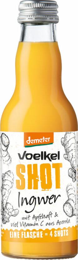 Voelkel Shot Ingwer 12x0,2l