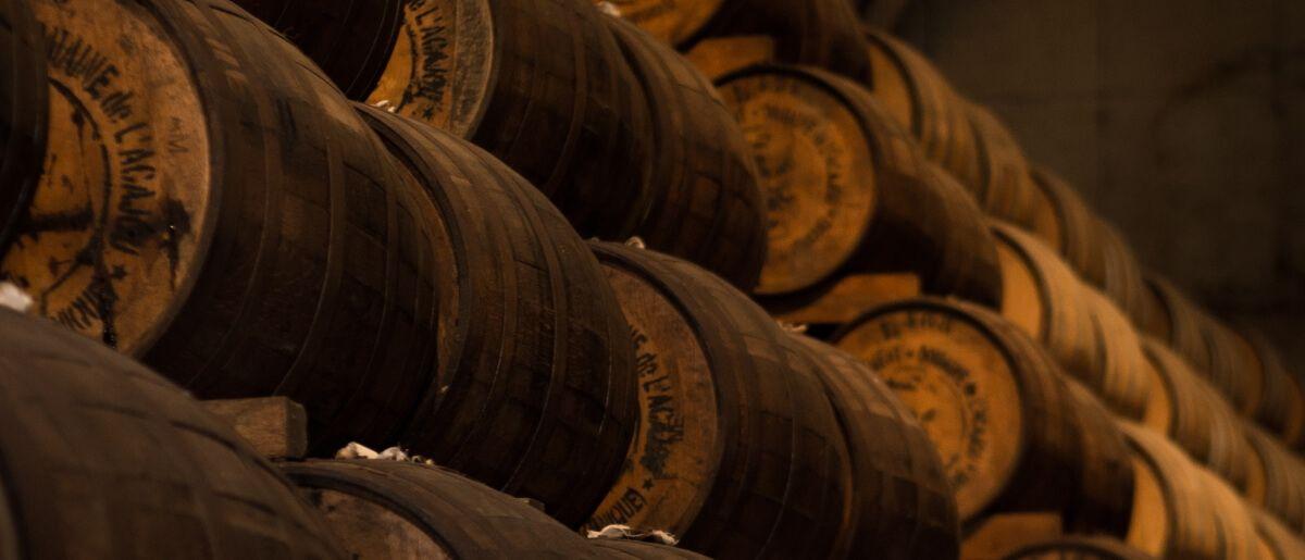 Holzweinfässer in einem Weinkeller
